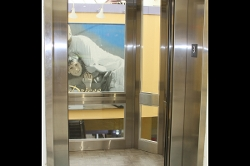 Open Windowed Elevator Door 2